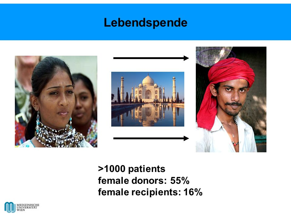 Lebendspende >1000 patients female donors: 55%