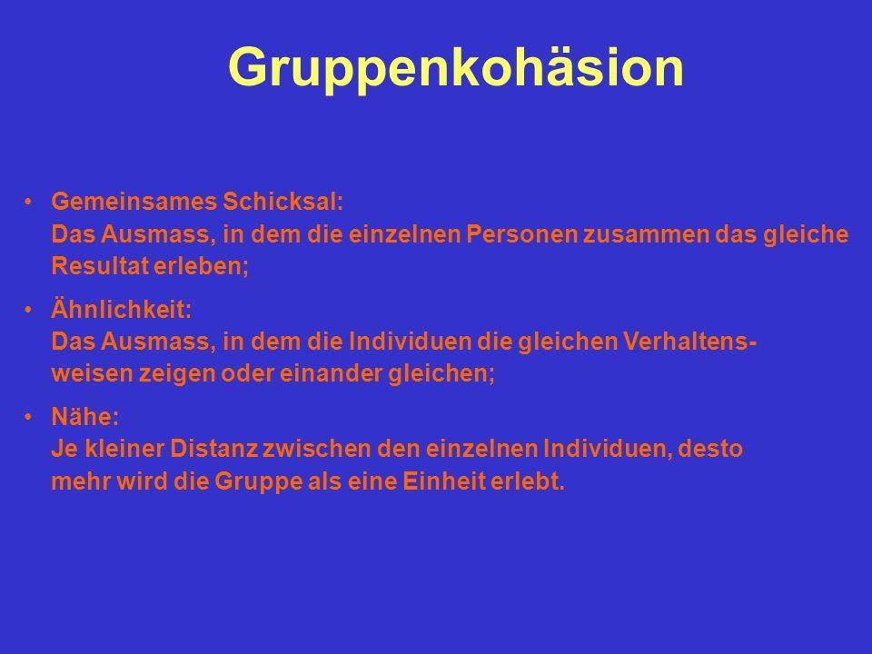 Gruppenkohäsion Gemeinsames Schicksal: Das Ausmass, in dem die einzelnen Personen zusammen das gleiche Resultat erleben;