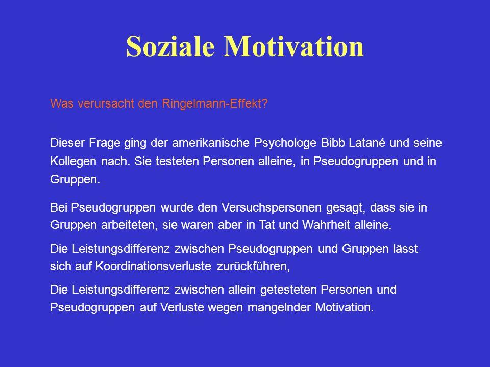 Soziale Motivation Was verursacht den Ringelmann-Effekt