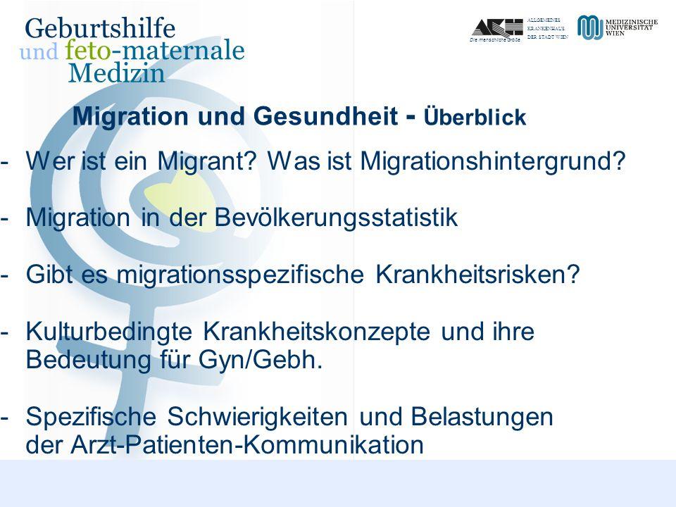 Migration und Gesundheit - Überblick