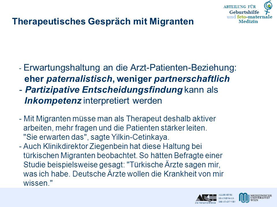Therapeutisches Gespräch mit Migranten