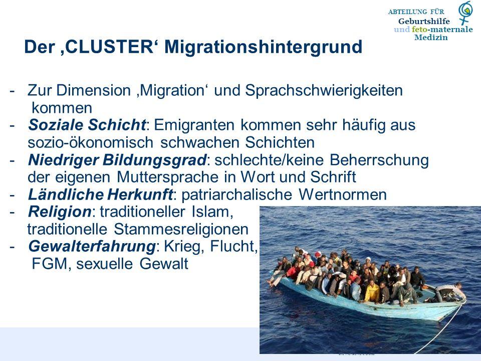 Der 'CLUSTER' Migrationshintergrund