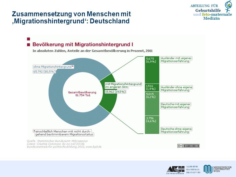 Zusammensetzung von Menschen mit 'Migrationshintergrund': Deutschland