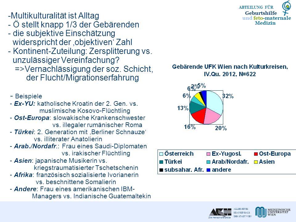 Multikulturalität ist Alltag - Ö stellt knapp 1/3 der Gebärenden - die subjektive Einschätzung widerspricht der 'objektiven' Zahl - Kontinent-Zuteilung: Zersplitterung vs.