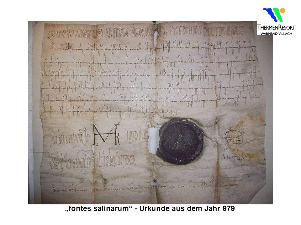 """""""fontes salinarum - Urkunde aus dem Jahr 979"""