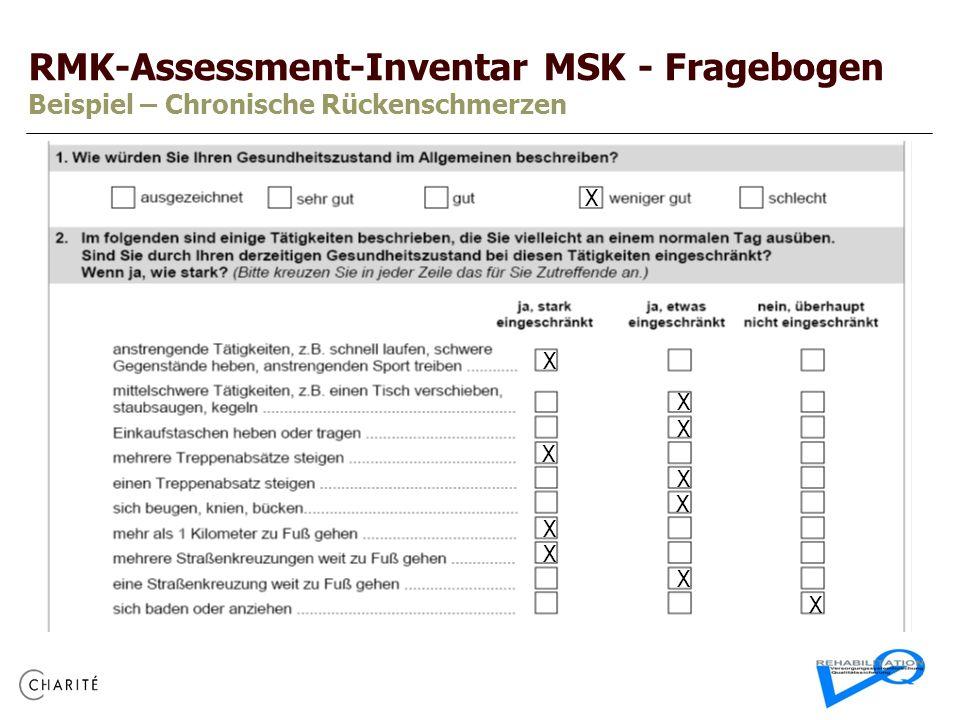 RMK-Assessment-Inventar MSK - Fragebogen Beispiel – Chronische Rückenschmerzen