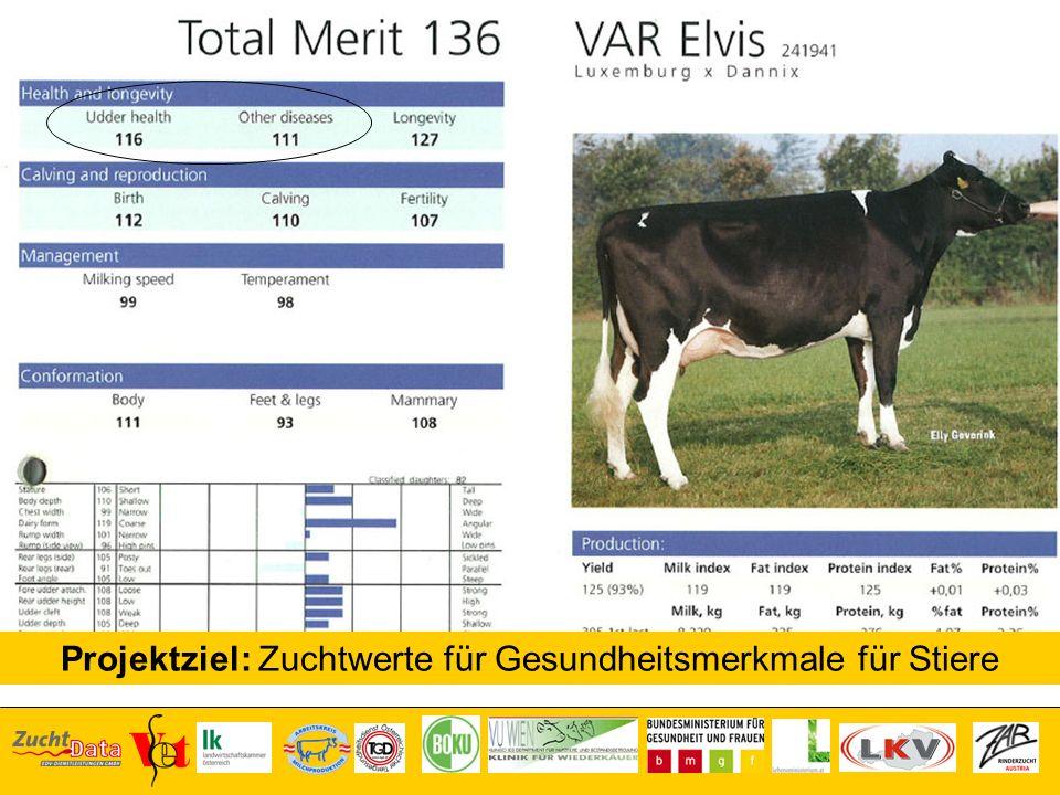Projektziel: Zuchtwerte für Gesundheitsmerkmale für Stiere