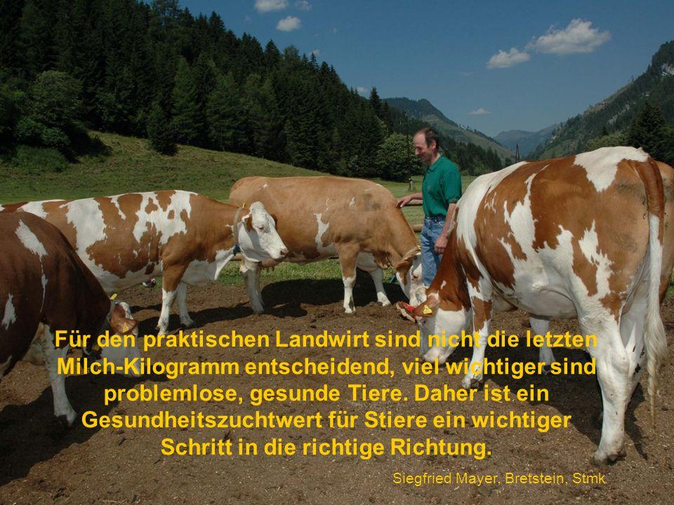 Für den praktischen Landwirt sind nicht die letzten Milch-Kilogramm entscheidend, viel wichtiger sind problemlose, gesunde Tiere. Daher ist ein Gesundheitszuchtwert für Stiere ein wichtiger Schritt in die richtige Richtung.