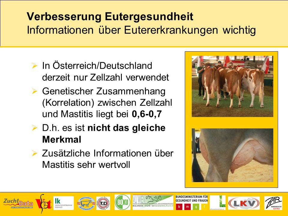 Verbesserung Eutergesundheit Informationen über Eutererkrankungen wichtig