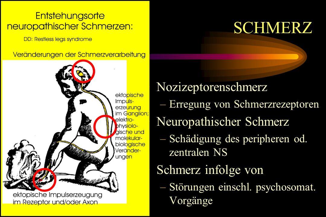 SCHMERZ Nozizeptorenschmerz Neuropathischer Schmerz