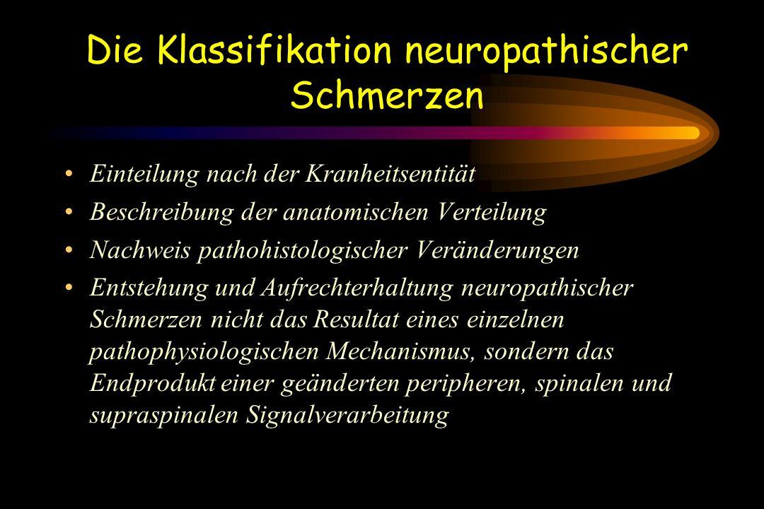 Die Klassifikation neuropathischer Schmerzen
