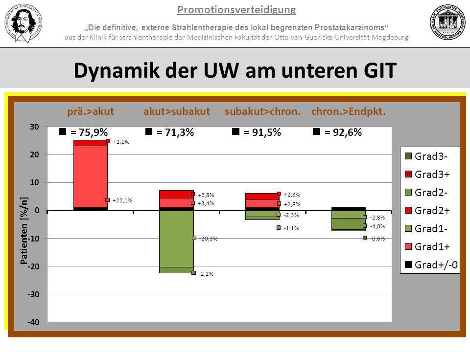 Promotionsverteidigung Dynamik der UW am unteren UGT