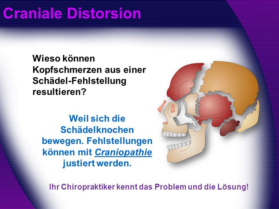 Craniale Distorsion Wieso können Kopfschmerzen aus einer Schädel-Fehlstellung resultieren