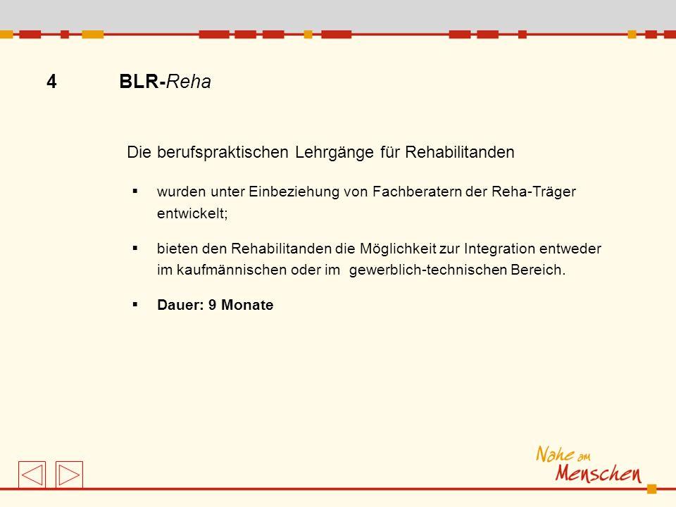 4 BLR-Reha Die berufspraktischen Lehrgänge für Rehabilitanden