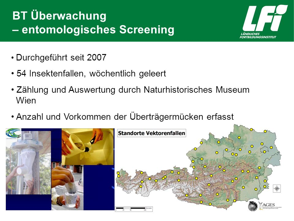 BT Überwachung – entomologisches Screening