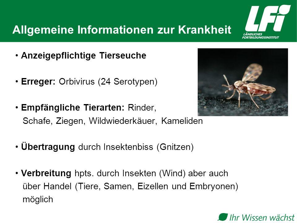 Allgemeine Informationen zur Krankheit