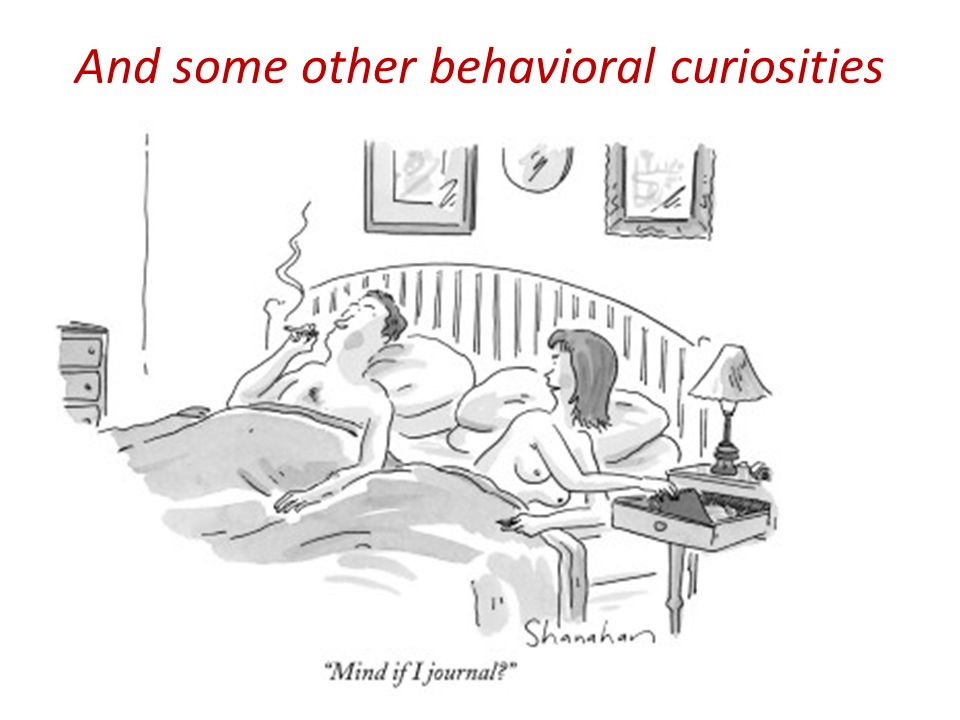 And some other behavioral curiosities