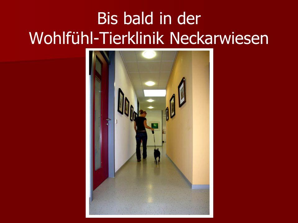 Bis bald in der Wohlfühl-Tierklinik Neckarwiesen