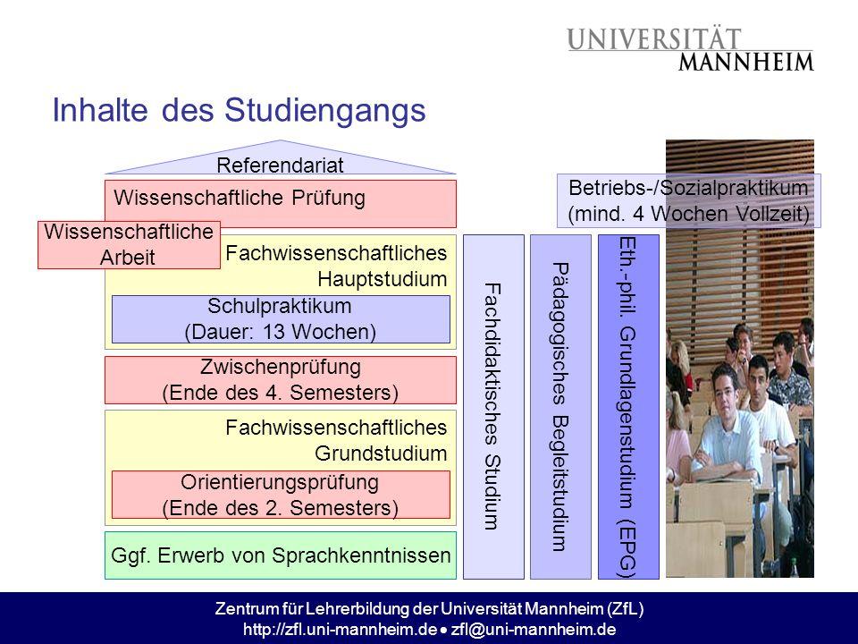 Inhalte des Studiengangs
