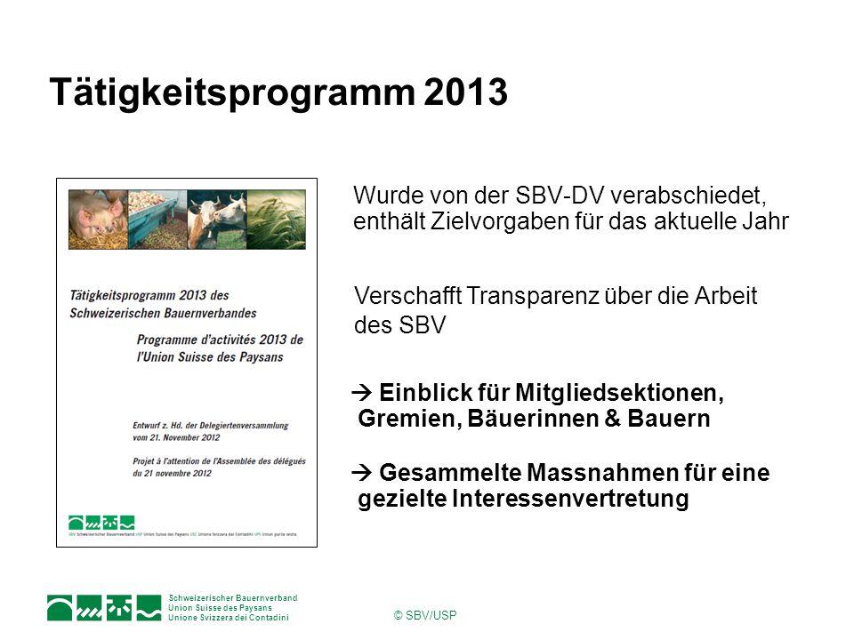Tätigkeitsprogramm 2013 Wurde von der SBV-DV verabschiedet, enthält Zielvorgaben für das aktuelle Jahr.