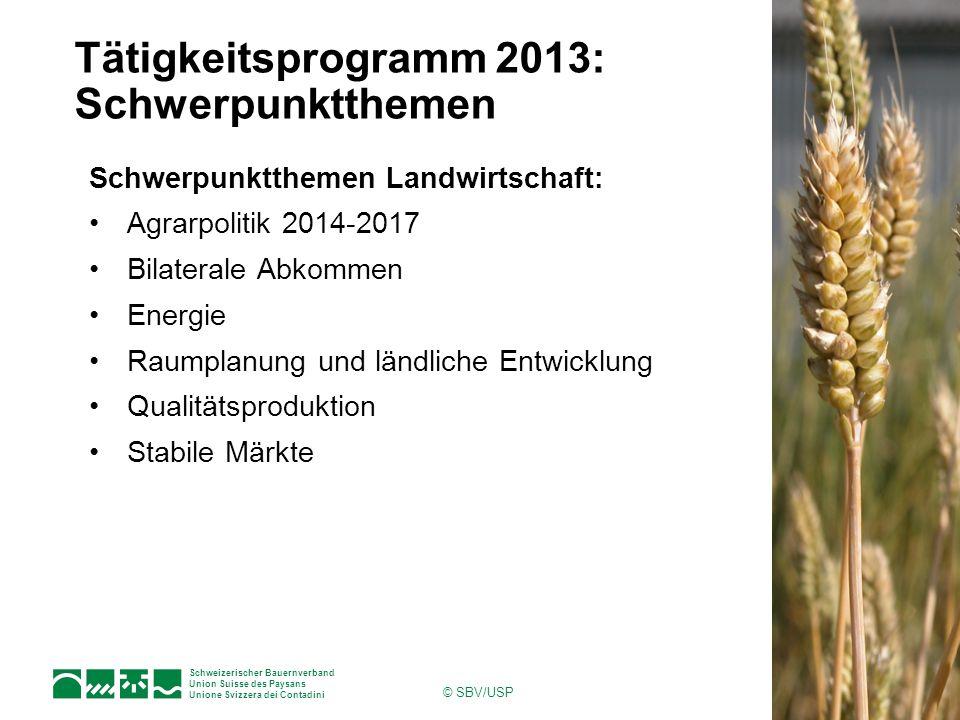Tätigkeitsprogramm 2013: Schwerpunktthemen