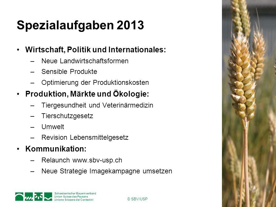 Spezialaufgaben 2013 Wirtschaft, Politik und Internationales: