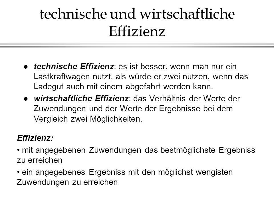 technische und wirtschaftliche Effizienz