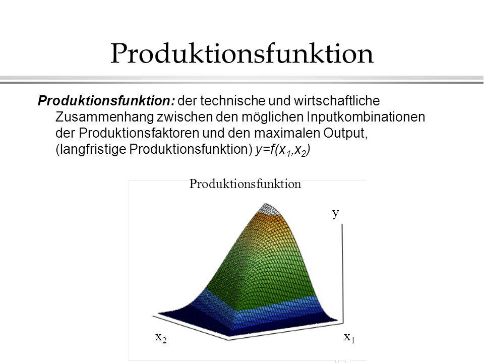 Produktionsfunktion
