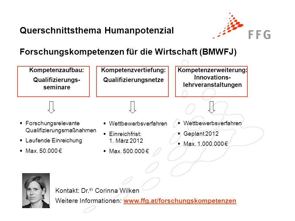 Querschnittsthema Humanpotenzial Forschungskompetenzen für die Wirtschaft (BMWFJ)