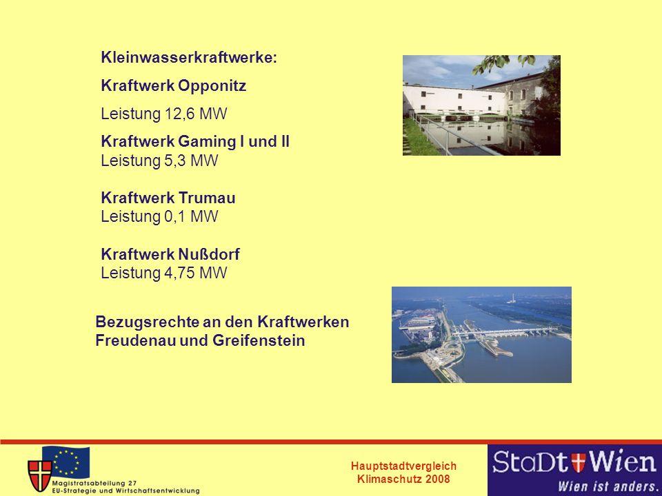 Kleinwasserkraftwerke:
