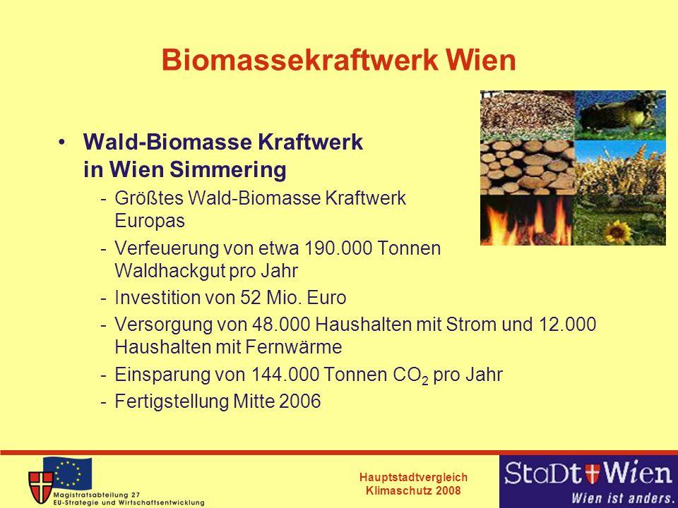Biomassekraftwerk Wien