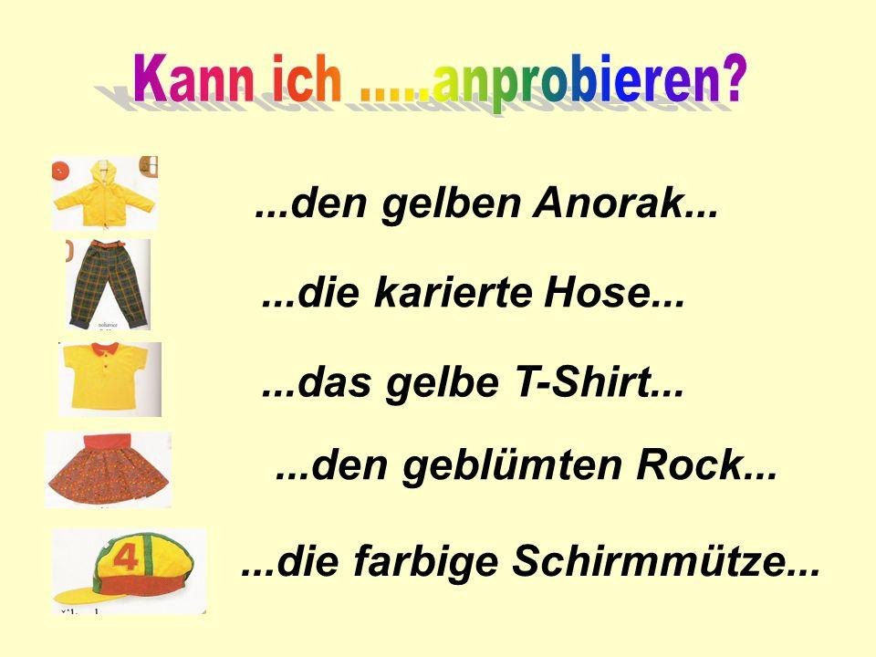 Kann ich .....anprobieren ...den gelben Anorak... ...die karierte Hose... ...das gelbe T-Shirt...