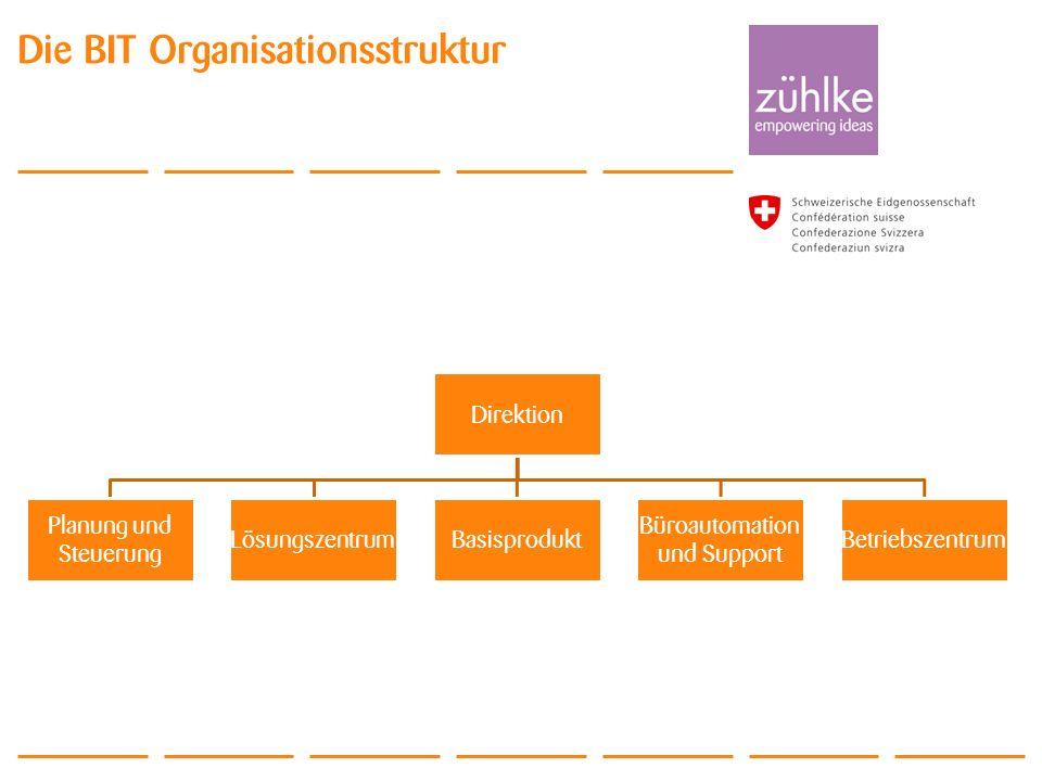 Die BIT Organisationsstruktur