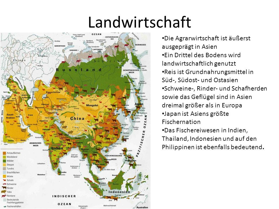 Landwirtschaft Die Agrarwirtschaft ist äußerst ausgeprägt in Asien