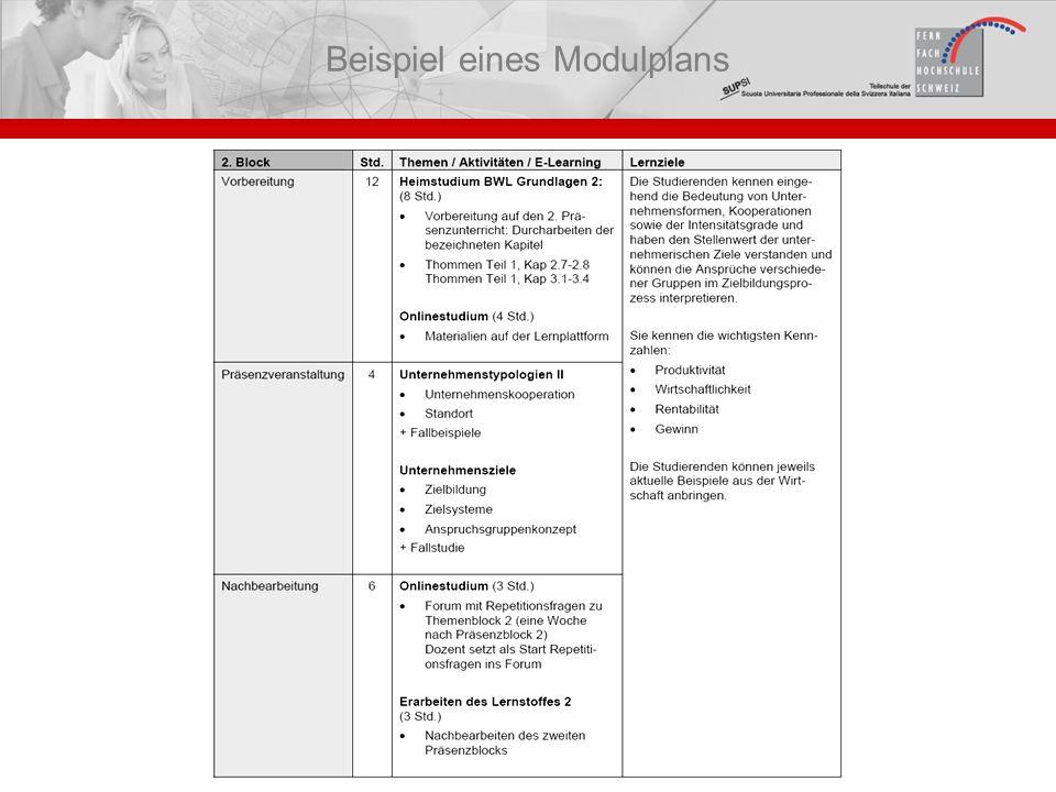 Beispiel eines Modulplans
