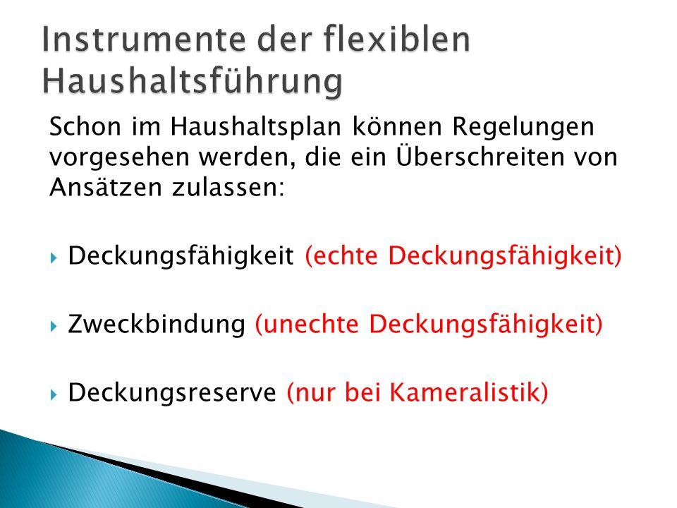Instrumente der flexiblen Haushaltsführung