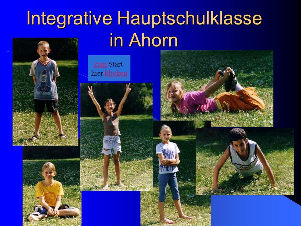 Integrative Hauptschulklasse in Ahorn