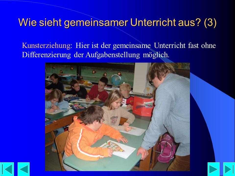 Wie sieht gemeinsamer Unterricht aus (3)