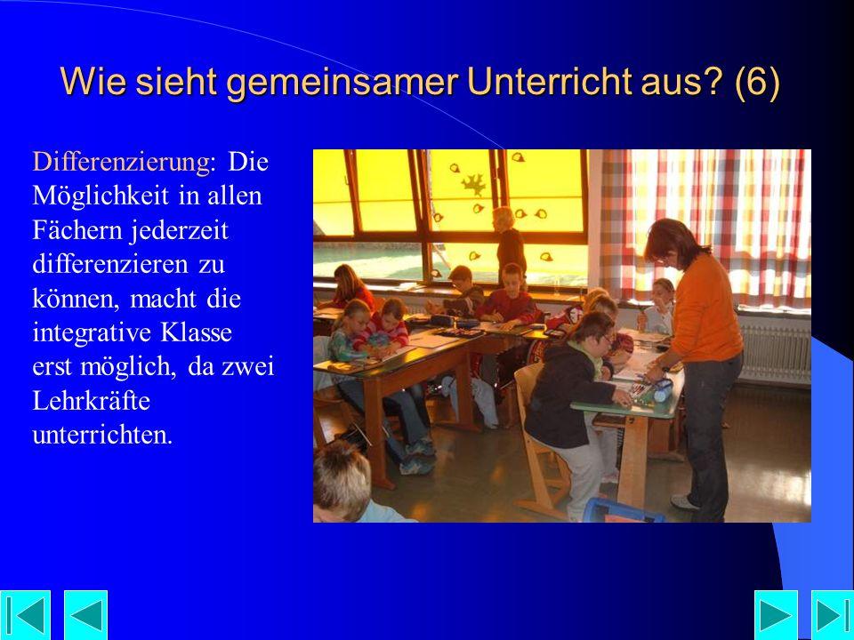 Wie sieht gemeinsamer Unterricht aus (6)