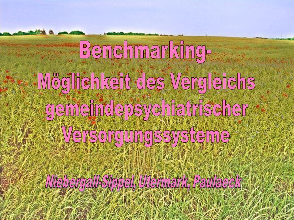 Benchmarking- Möglichkeit des Vergleichs gemeindepsychiatrischer