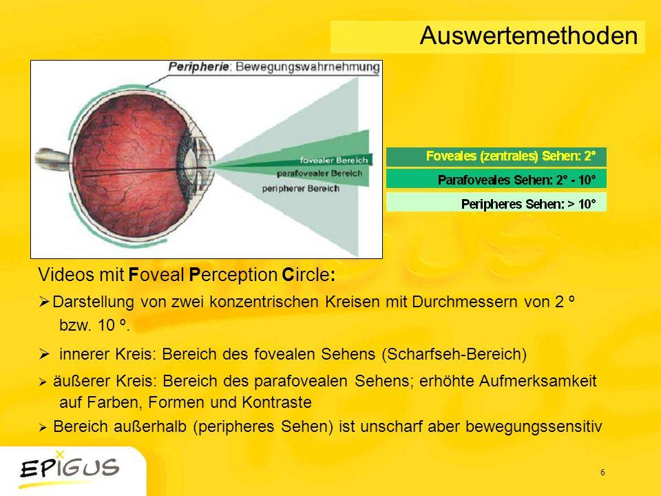 Auswertemethoden Videos mit Foveal Perception Circle: Darstellung von zwei konzentrischen Kreisen mit Durchmessern von 2 º bzw. 10 º.