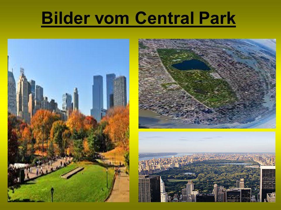 Bilder vom Central Park