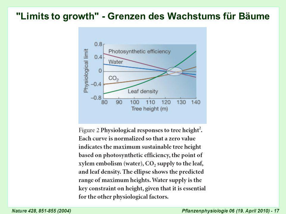 Limits to growth - Grenzen des Wachstums für Bäume