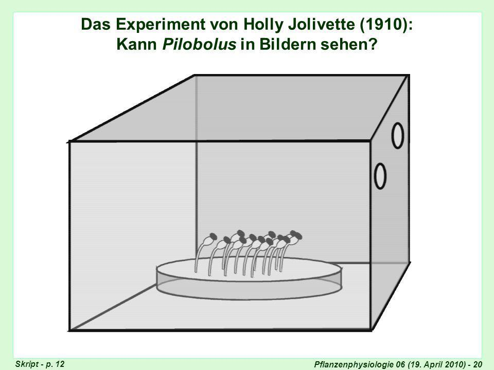 Experiment von Holly Jolivette