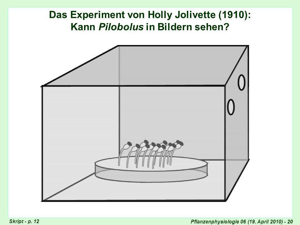 Experiment von Holly Jolivette