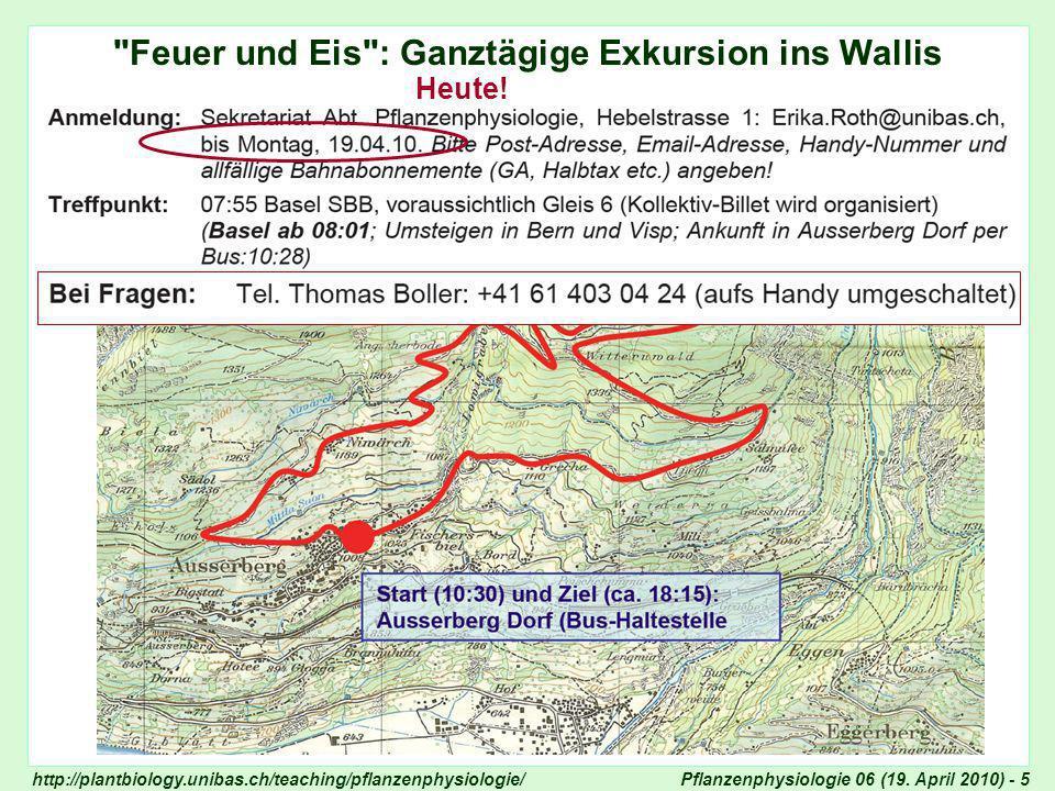 Feuer und Eis : Ganztägige Exkursion ins Wallis
