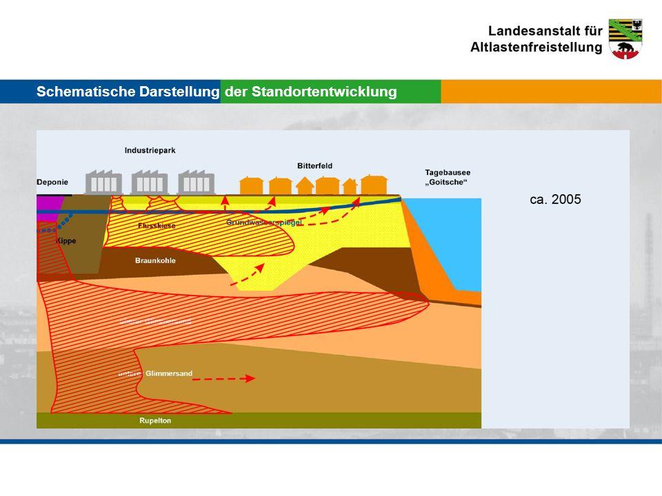 Schematische Darstellung der Standortentwicklung