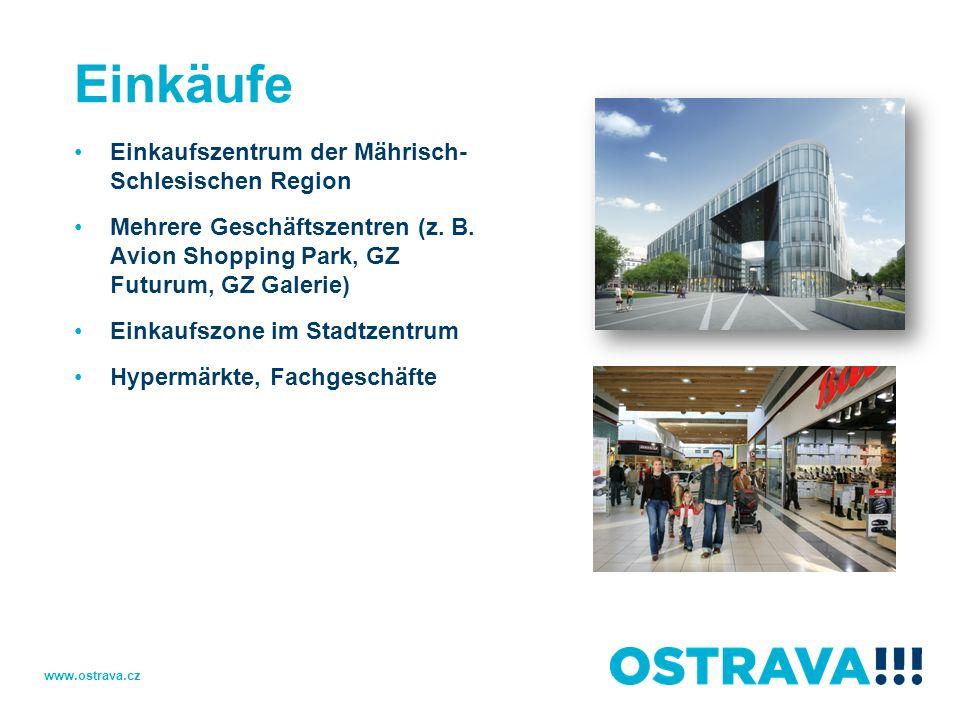 Einkäufe Einkaufszentrum der Mährisch- Schlesischen Region