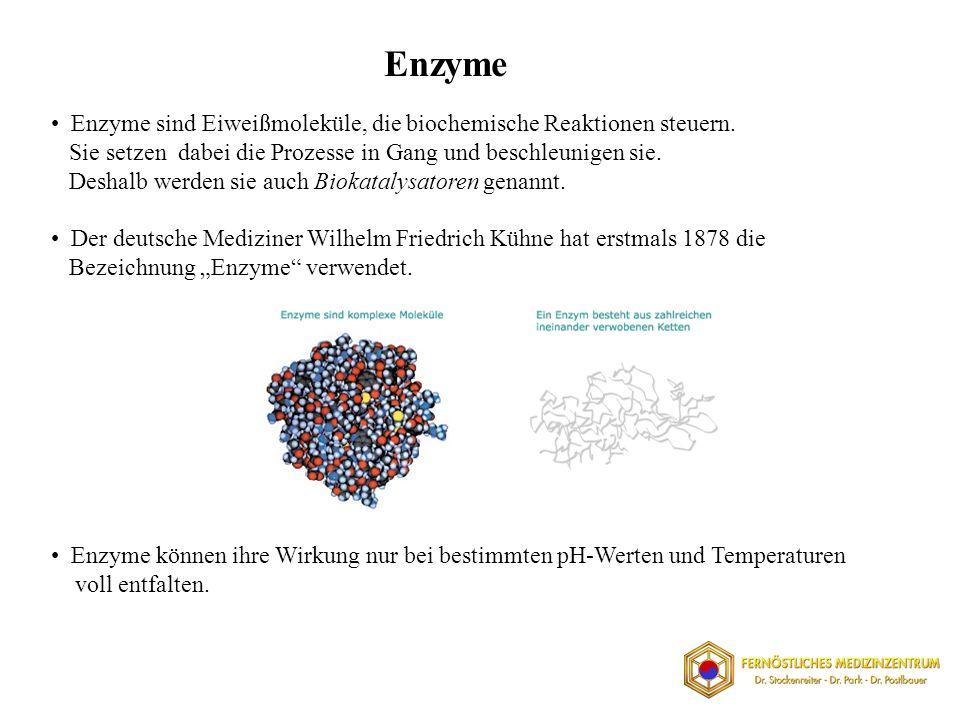 Enzyme Enzyme sind Eiweißmoleküle, die biochemische Reaktionen steuern. Sie setzen dabei die Prozesse in Gang und beschleunigen sie.