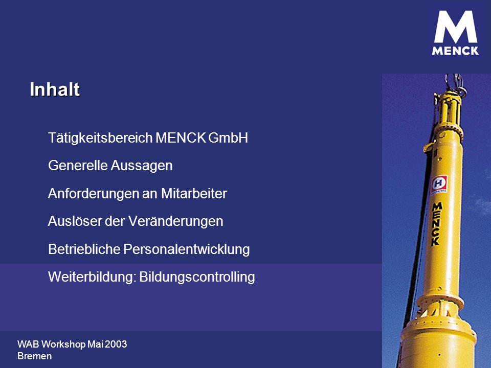 Inhalt Tätigkeitsbereich MENCK GmbH Generelle Aussagen